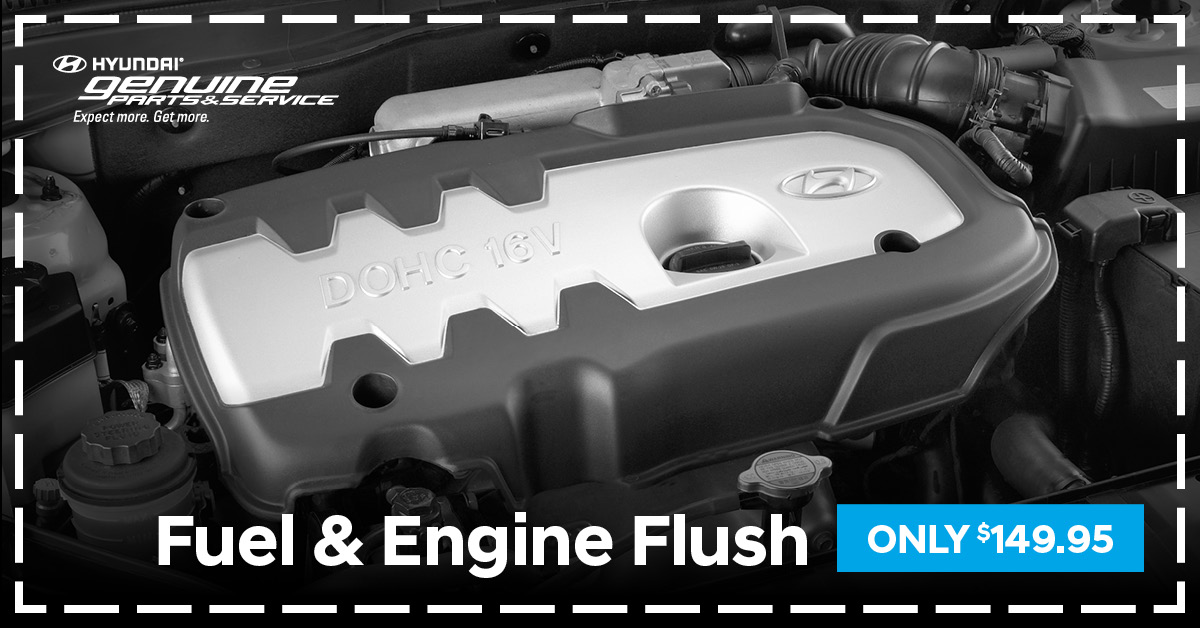 Engine & Fuel System Flush